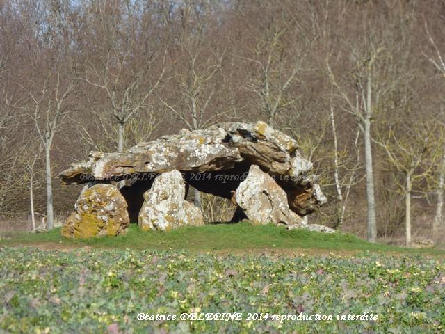 Dolmen de Neuville de Poitou 86
