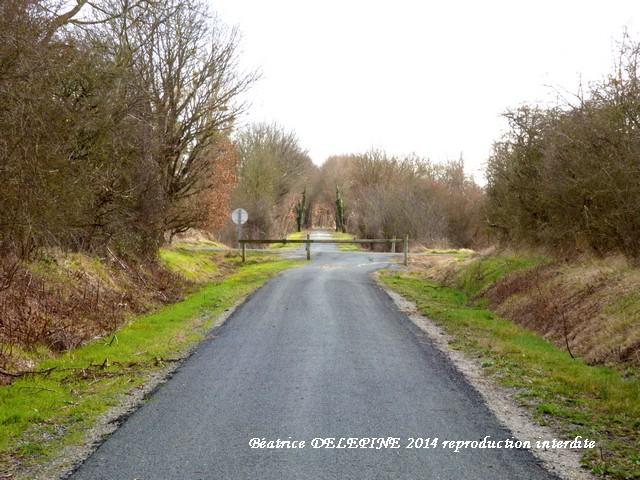 La ligne verte (86) en direction de Savigny sous Faye, départ de Lencloire