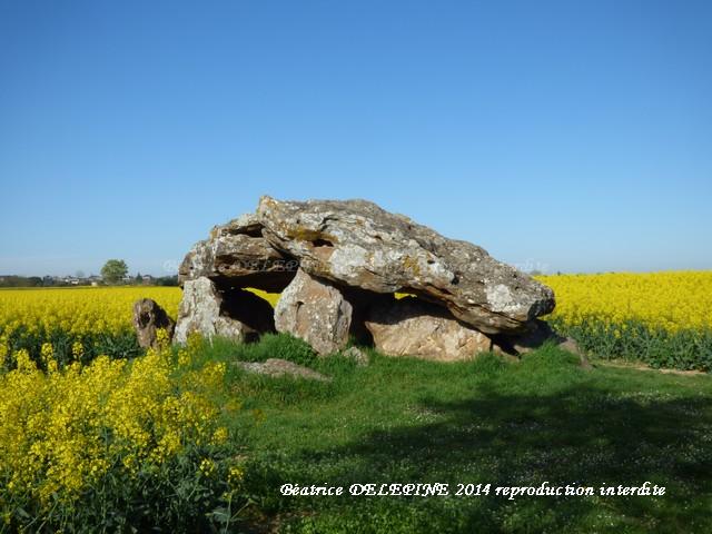 Dolmen de Neuville de Poitou
